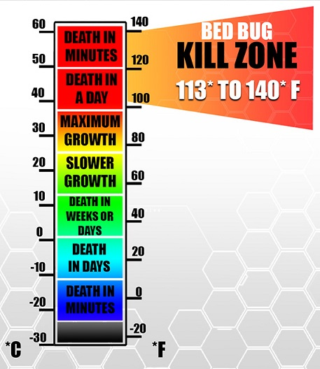 Bed Bug kill temperatures